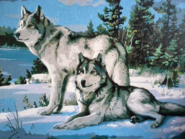 Painting Wolves in Winter